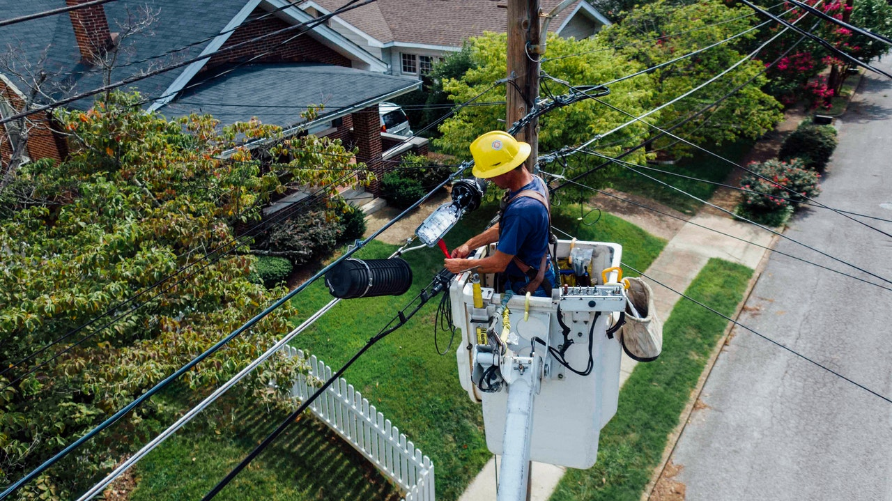 house trees electrician post